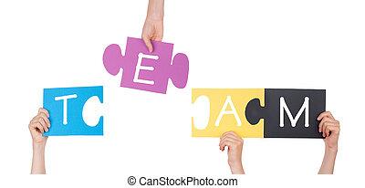 puzzle, mains, tenue, équipe