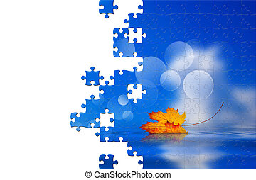 Puzzle of leaf fallen on the water