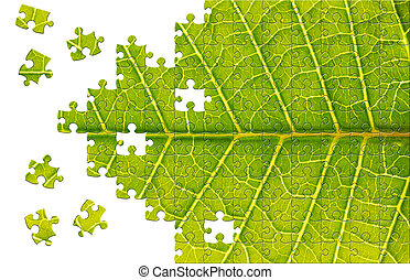 Puzzle with missing pieces - Puzzle Leaf texture close up...