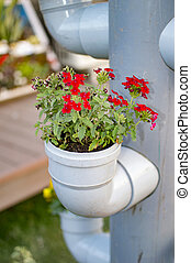 PVC pipe with green flower plants grown