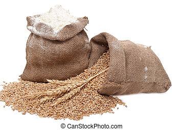 pył, pszeniczne ziarno