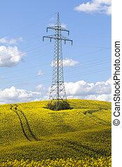 Pylon - field of rape