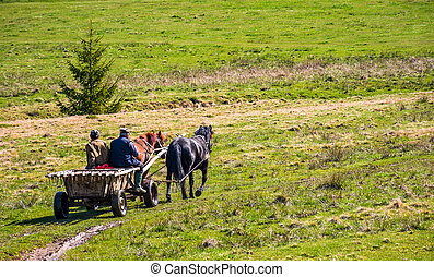 traffic in mountainous rural area in summer - Pylypets,...