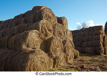 pyramid of hay