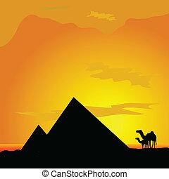 pyramide, camellos, desierto, ilustración