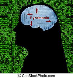 pyromania, 概念, 心
