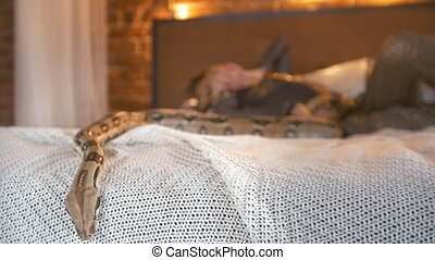 Python crawling on the bed in front of woman dancer