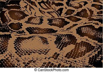 python, model, abstract, vector, -