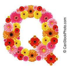 q, alfabeto, flor