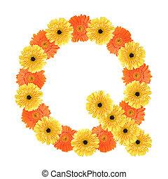 q, alfabeto, flor, criado