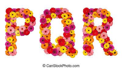 q, alfabeto, p, isolato, -, lettera, fiore, r, bianco