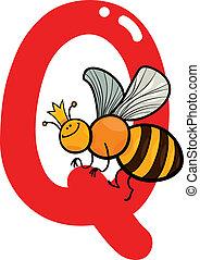 q, ape regina