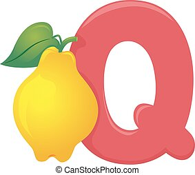 Q for Quince Illustration - Illustration of Fruit Alphabet,...