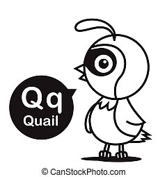 Q Quail cartoon and alphabet for children to learning and coloring page vector illustration eps10