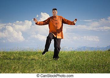 Qi-Gong outdoor - A man doing Qi-Gong in the green nature