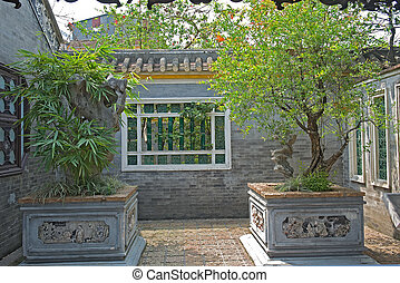 Qinghui garden potted plants - Potted plants, Qinghui garden...