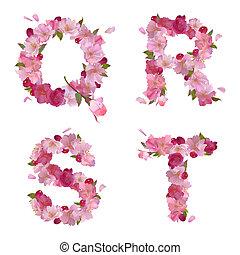 qrst, アルファベット, 花, さくらんぼ, 春