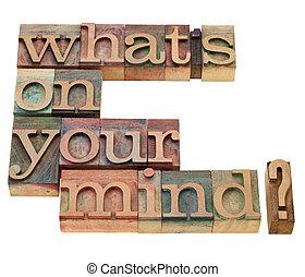 qué, es, en, usted, mind?