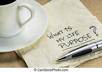 qué, es, mi, vida, propósito, pregunta