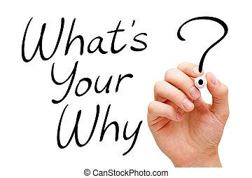 qué, es, su, por qué, existencial, pregunta