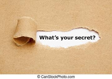 qué, es, su, secreto, papel roto, concepto