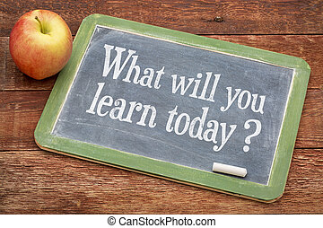 qué, voluntad, usted, aprender, today?