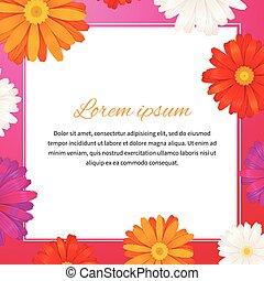 quadrado, beleza, texto, espaço, ilustração, modelo, flores,...