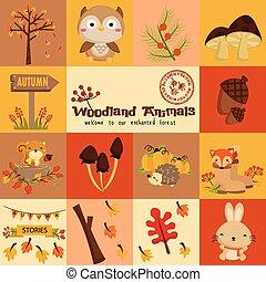 quadrado, bosque, animal, outono