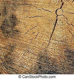 quadrato, vecchio, colorare, cornice, su, struttura, naturale, grano legno, chiudere