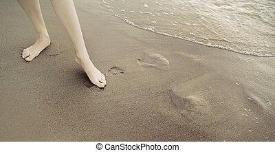quadro, apresentando, shapely, femininas, pernas