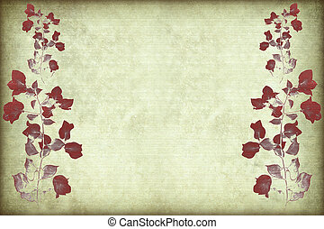 quadro, bougainvillea, vermelho, ramo
