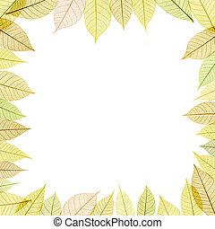 quadro, com, transparente, folha
