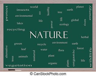 quadro-negro, conceito, palavra, nuvem, natureza