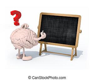 quadro-negro, mão, giz, cérebro, braços, frente, pernas