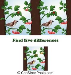 quadro, pardal, diferenças, ilustração, vetorial, 5, achar
