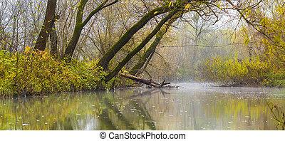 quadro, sobre, lago, árvores, nevoeiro, rio verde, ou, paisagem