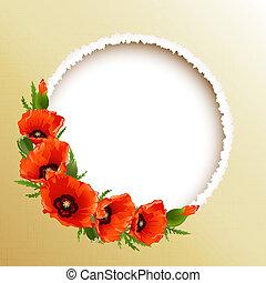 quadro, vetorial, papoulas, floral, redondo, vermelho