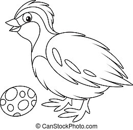 Black and white vector illustration of a small quail and its spotted egg