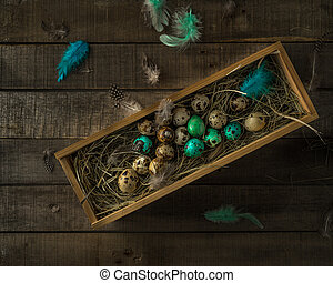 Quail Easter eggs in wooden box, some painted, feathers on wooden rustic background