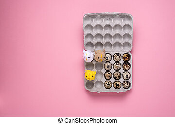 quail eggs and bird in cardboard box on pink background