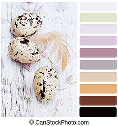 Quail Eggs and Chives Blossoms Palette