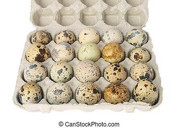 quail eggs in a carton box