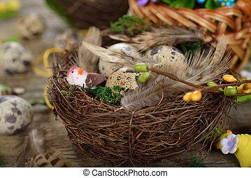 Quail eggs in a nest