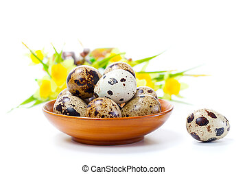 Quail eggs in bowl, isolated on white background.