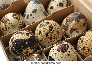 Quail eggs in carton box isolated on white background, closeup