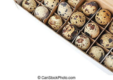 Quail eggs in carton box isolated on white background, top view