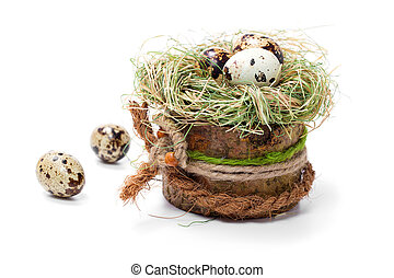 quail eggs in nest isolated on white
