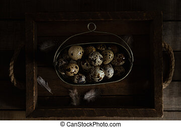 Quail eggs in old metal bowl on wooden rustic background. Dark Moody Still Life Photography