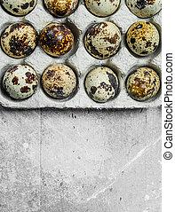 Quail eggs in the cassette.