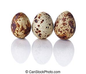 Quail eggs isolated on white